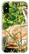 Red Fox Pup Hiding IPhone Case