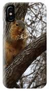 Fox Squirrel 1 IPhone Case