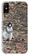 Fox Squirrel Curious IPhone Case