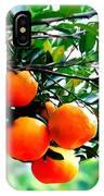 Fresh Orange On Plant IPhone Case