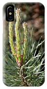 Fresh Pine Sprouts IPhone Case