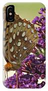 Fritillary Butterfly On Buddleia IPhone Case