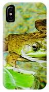 Frog  Abby Aldrich Rockefeller Garden IPhone Case