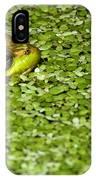 Frog In Duckweed IPhone Case
