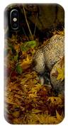 Frog In The Fall IPhone Case