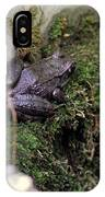 Frog On Moss On Wall IPhone Case