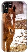 Frolicking In The Snow  IPhone Case