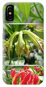 From Bud To Bloom - Gloriosa Named Rothschildiana IPhone Case