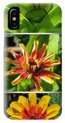 From Bud To Bloom - Zinnia IPhone Case