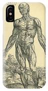 Front Of Male Human Body.anatomical IPhone Case