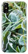 Frost On Strawberry Leaves IPhone Case