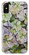 Frost On Waldsteinia Leaves. IPhone Case