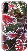 Frost On Wild Strawberry IPhone Case