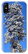 Frosty Pine IPhone Case