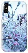 Frozen In Ice Nature IPhone Case