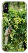 Fruit On The Vine IPhone Case