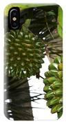Fruto De Palmera IPhone Case