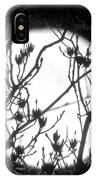Full Moon And Poplar Branches IPhone Case