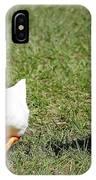 Fun Ducks IPhone Case