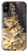 Fungi On Oak IPhone Case