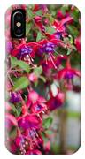 Fuchsia Spilling Over  IPhone Case