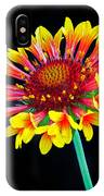 Gaillardia Arizona Sun IPhone Case