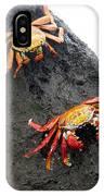 Galapagos Islands 02 IPhone Case