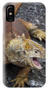 Galapagos Land Iguana IPhone Case