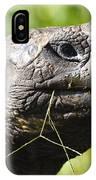Galapagos Tortoise Galapagos Islands National Park Santa Cruz Island IPhone Case