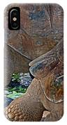 Galapagos Tortoise IPhone Case