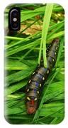 Gallium Sphinx Caterpillar IPhone Case