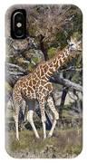Galloping Giraffe  IPhone Case