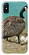 Gander Protecting The Nest IPhone Case