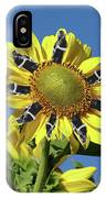 Garciacat Sunflower IPhone Case