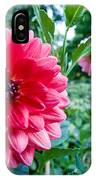 Garden Dahlia IPhone Case