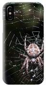 Garden Spider IPhone Case