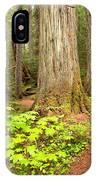 Garibaldi Wilderness Rainforest IPhone Case