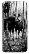 Gathering Of Moose IPhone Case
