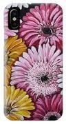 Gebera Daisies IPhone Case