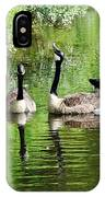 Geese And Green IPhone Case