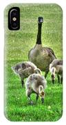Geese Hdr IPhone Case