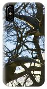 Geese In Twlight Sky IPhone Case