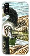 Geese On The Pond II IPhone Case