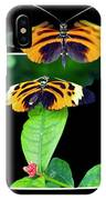 Gentle Butterfly Courtship 01 Out Of Bounds IPhone Case