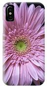Gerber Daisy Flower IPhone Case