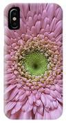 Gerber Daisy IPhone Case