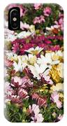 Gerbera Flowers IPhone Case