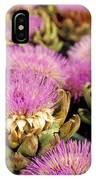 Germany Aachen Munsterplatz Artichoke Flowers IPhone Case