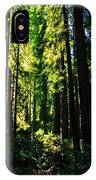 Giant Redwood Forest IPhone Case