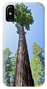Giant Sequoia In Mariposa Grove In Yosemite National Park-california  IPhone Case